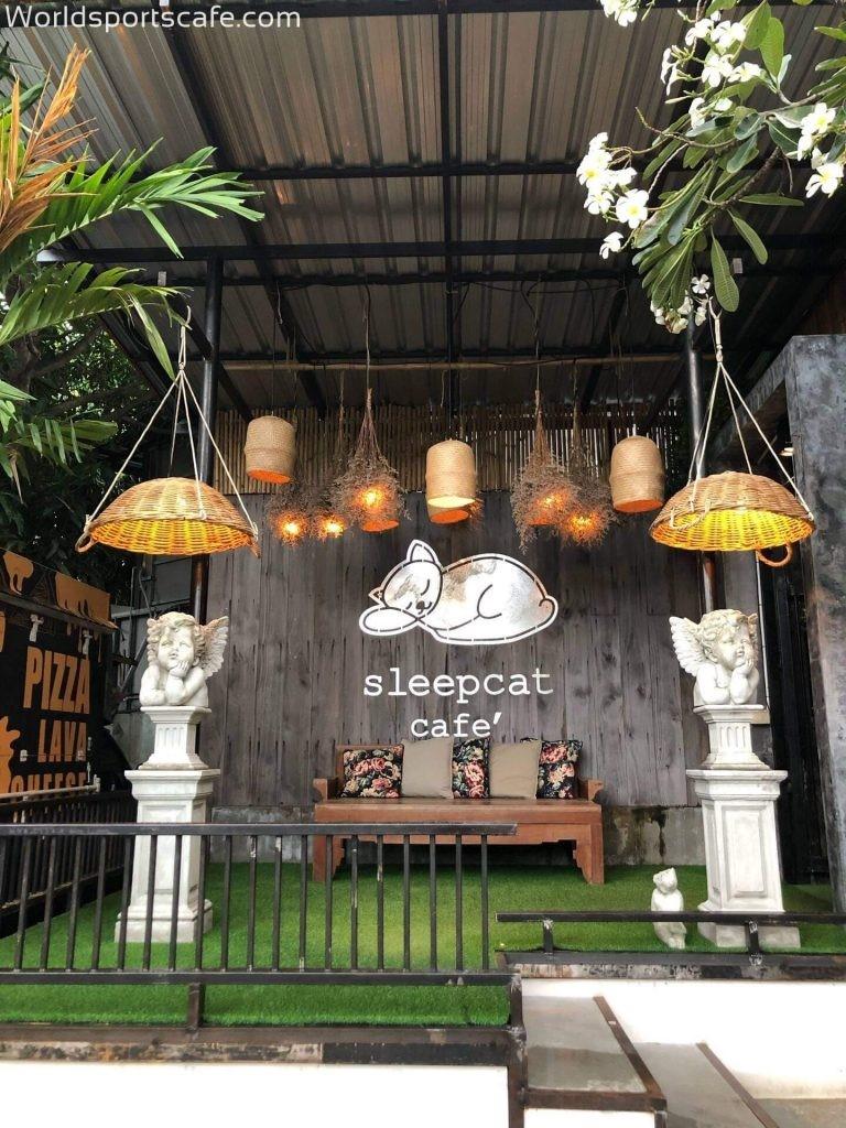 Sleep cat café (สลีปแคทคาเฟ่)