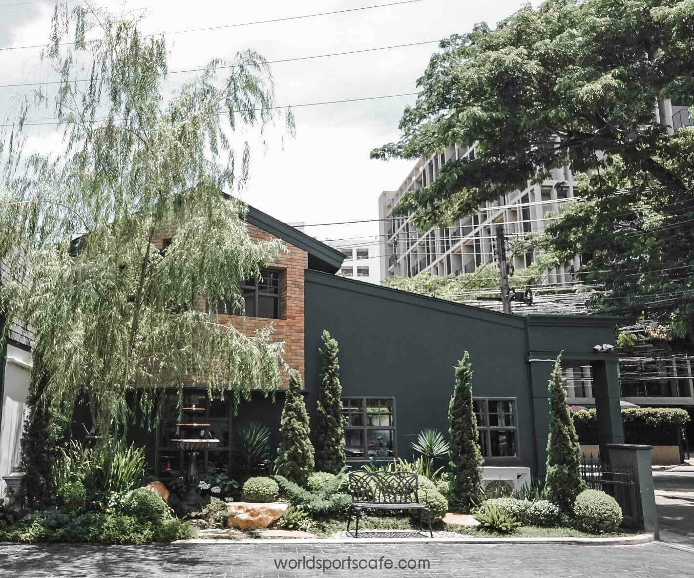 """LAFF Cafe"" สไตล์โฮมเมด ต้นไม้นานาชนิด"